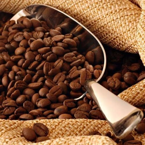 café de Brasil bio en grano