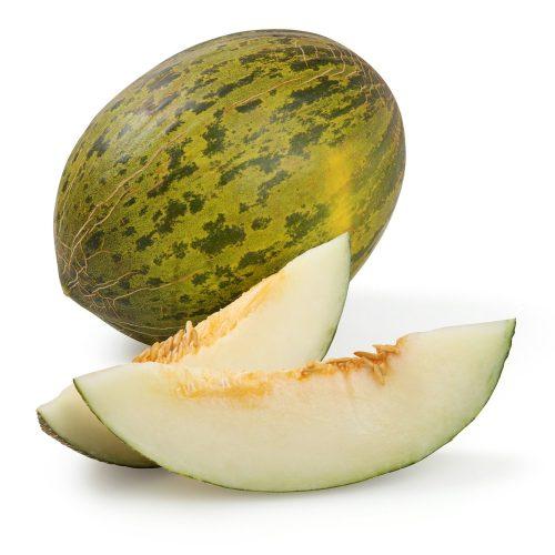 melon piel de sapo bio km0