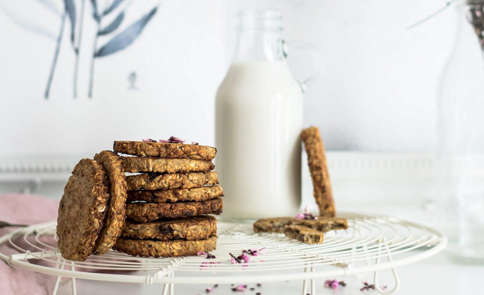 galletas caseras de avena ecologica