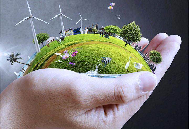 dia-del-medio-ambiente-mundo verde en mano