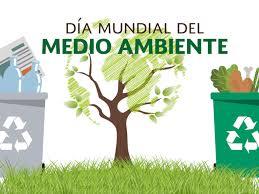 dia-medio-ambiente-segrega-la-basura